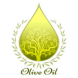 Olive oil label or emblem Royalty Free Stock Photos