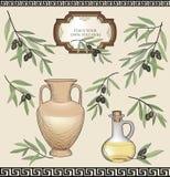 Olive oil label set . Floral nature food ingredient. Greek retro old-fashioned wallpaper stock illustration