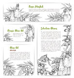 Olive oil market vector sketch banners or posters Royalty Free Stock Photography