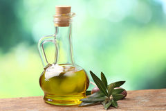 Olive oil and olive branch Stock Photography
