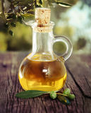 Olive oil and olive branch on the wooden table Stock Photos