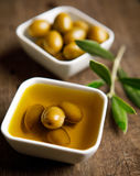 Olive oil and olive branch on the wooden table.  Stock Photography
