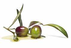 Olive oil and olives Royalty Free Stock Photo