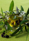 Olive Oil and Olives Royalty Free Stock Image