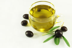 Olive oil, olives and branch. Transparent cup olive oil, olives and branch Stock Photos