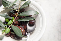 Olive oil and olives on marble. Olive oil and olives on white marble stock photos