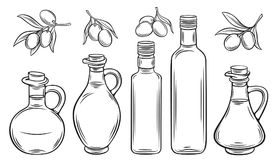 Olive oil and olives. Vector glass bottle, Jug of olive oil and olives with leaves. Illustration outline in retro sketch style. Watercolor design royalty free illustration
