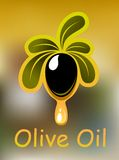 Olive oil poster or card design Royalty Free Stock Photos