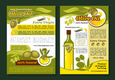 Olive oil poster template for healthy food design. Olive oil natural product poster template. Organic olive oil bottle, olive tree branch with green fruit, leaf vector illustration