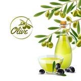 Olive oil pourer backdround. Olive oil pourer with branch of green olives decorative background poster print abstract vector illustration Vector Illustration