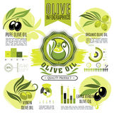 Olive oil product vectro infographics elements Stock Photo