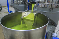 Olive oil production Stock Photo