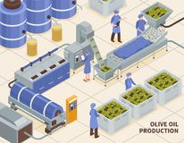 Olive Oil Production Isometric royalty free illustration