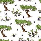 Olive Oil Seamless Pattern disegnata a mano Fotografie Stock Libere da Diritti