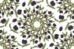Olive Oil Seamless Pattern disegnata a mano Fotografia Stock Libera da Diritti