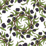 Olive Oil Seamless Pattern disegnata a mano Immagini Stock Libere da Diritti