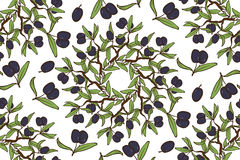 Olive Oil Seamless Pattern tirada mão Foto de Stock Royalty Free