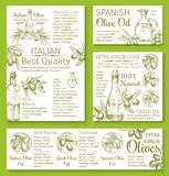Olive oil sketch banners or posters of olives. Olive oil and olives sketch banners and posters for cooking olive oil products. Vector black and green olive Stock Photo