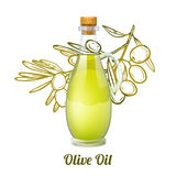 Olive Oil Sketch Concept Royalty Free Stock Photos