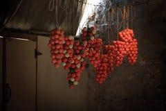 Olive Oil Soaps, Tripoli, Liban Images libres de droits