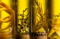 Olive oil with spices and herbs. Stock Photo