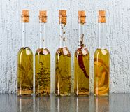 Olive oil with spices and herbs. Stock Photography