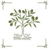 Olive oil Stock Photos