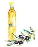 Olive Oil in una bottiglia di vetro Fotografie Stock Libere da Diritti