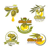 Olive oil vector icons product label template set Royalty Free Stock Photos