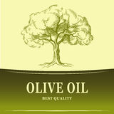 Olive oil. Vector  olive tree. For labels, pack. Royalty Free Stock Photography