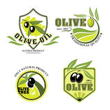 Olive oil vector product icons set Royalty Free Stock Image
