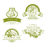Olive oil vector product template icons set. Olive oil bottle and product label templates. Vector icons of green olives branch and extra virgin natural organic vector illustration