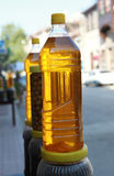 Olive oil of Zeytinbagi, Mudanya. Stock Photography