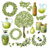 Olive Organic Elements Set vektor abbildung