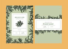 Olive packaging templates design with elements in color royalty free illustration