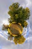 Olive peu de planète Images stock