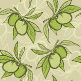 Olive seamless pattern. Vector green seamless pattern with olive branch Stock Photography