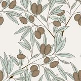 Olive seamless pattern Royalty Free Stock Images