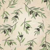 Olive seamless pattern. Floral nature food ingredient old-fashioned wallpaper Royalty Free Stock Photography