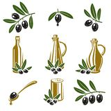 Olive set. Vector Royalty Free Stock Photo