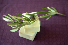 Olive soap. Hand made olive oil soap stock photos