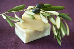 Olive soap. Hand made olive oil soap Royalty Free Stock Photos