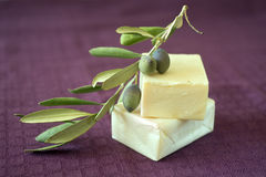 Olive soap. Hand made olive oil soap Stock Photography