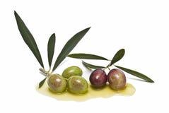 Olive sull'olio di oliva Fotografia Stock Libera da Diritti