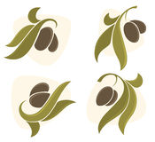 Olive symbols Royalty Free Stock Image