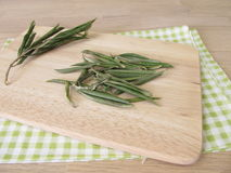 olive torkade leaves Fotografering för Bildbyråer