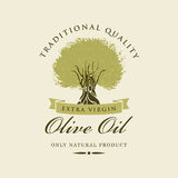 Olive tree. Banner with olive tree and olive oil labeled stock illustration
