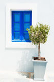 Olive tree and blue window Stock Photos