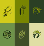 Olive tree branch. Set of labels. Vector illustration Stock Photos