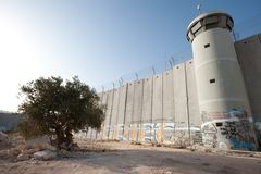 Olive Tree and Israeli Separation Barrier Royalty Free Stock Photography